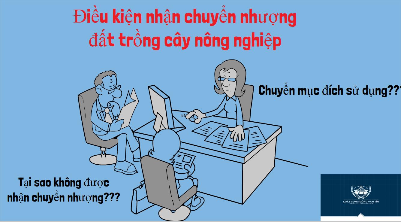 Dieu kien nhan chuyen nhuong dat trong cay nong nghiep - Điều kiện nhận chuyển nhượng đất trồng cây nông nghiệp