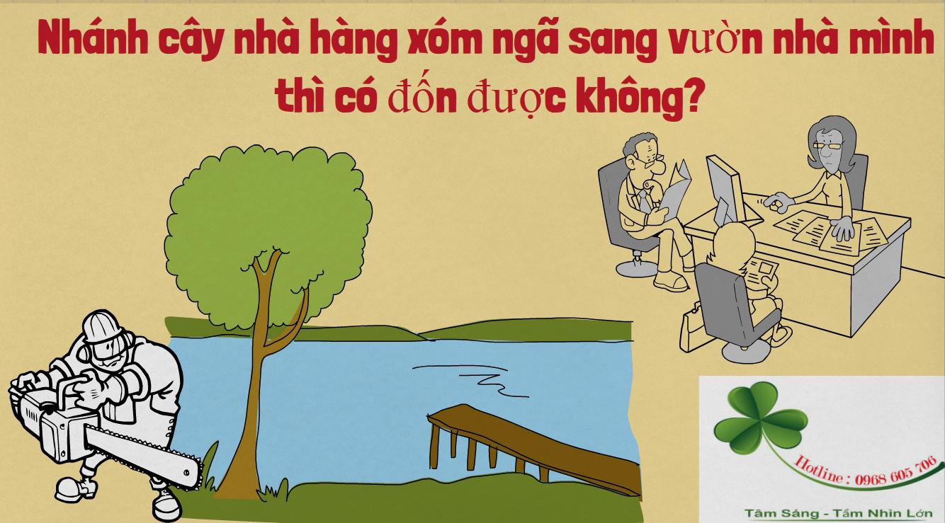 Nhanh cay nha hang xom nga sang nha minh thi co don duoc khong - Nhánh cây nhà hàng xóm ngả sang vườn nhà mình, thì có đốn được không?